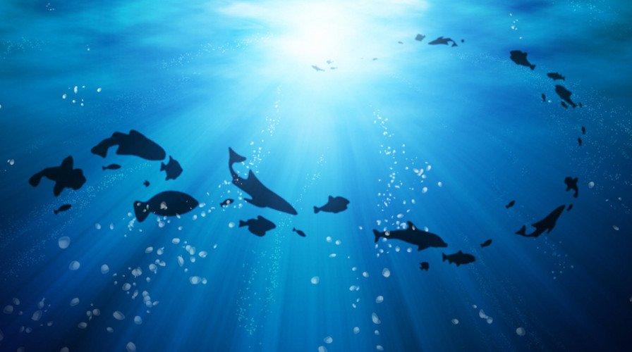 ocean_race
